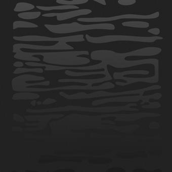 Двери Океан De Vesta стекло EGO черное образец фото