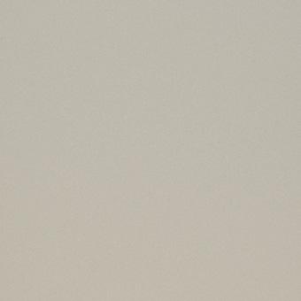 Двери Океан De Vesta стекло матовое белое образец фото