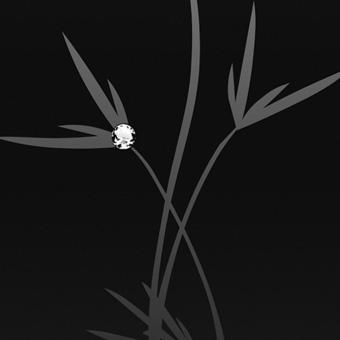 Двери Океан Glamour стекло растение черное фото интерьер