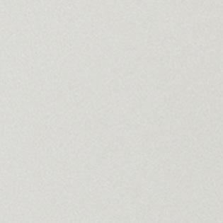 Двери Океан Де Веста стекло белое образец фото