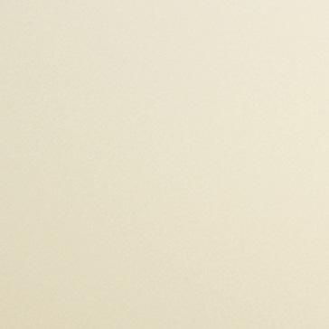 Двери Океан Шторм-3 стекло триплекс белое
